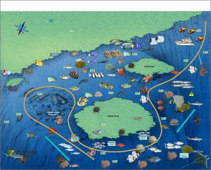 Схема расположения обломков и прилегающих рифов