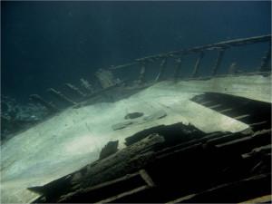 Остатки туристической яхты постепенно становятся рифом